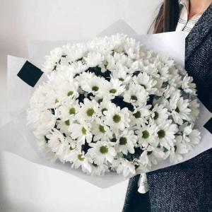 Букет 25 веток белой хризантемы в упаковке R132